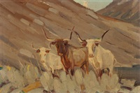 texas longhorns by harold dow bugbee