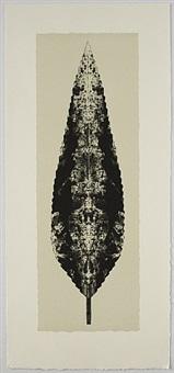 dark leaf by bruce conner