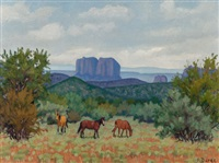 a gray day, sedona, arizona by fred darge
