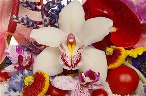 new mexico water by marc quinn