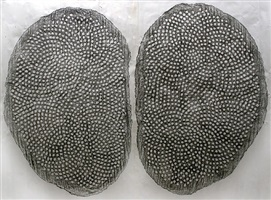 iimw by peter randall-page