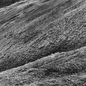 paysages 04 by hélène binet