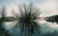 oosterplas – wilg (willow) by ellen kooi