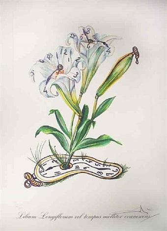 lilium longiflorum vel tempus evanescnes (lilies of time) by salvador dalí