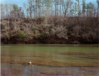 cahaba river, alabama, december 1999 by william christenberry