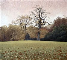 fallen leaves in springfield park by annie ovenden