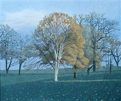 catching the light by annie ovenden