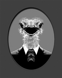 mythology collection: ostrich by maurice renoma