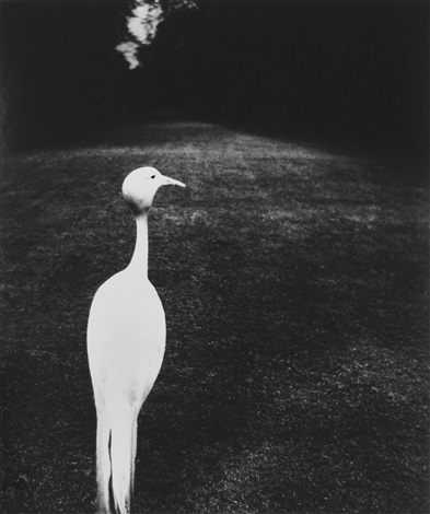 evening in kew gardens by bill brandt
