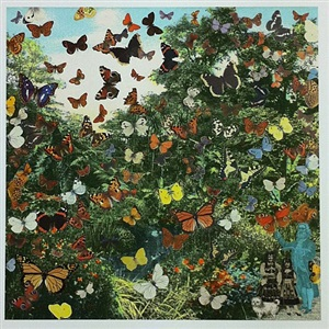 hyde park- positively the last appearance of the butterfly man by peter blake