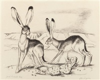 jack rabbits by otis dozier