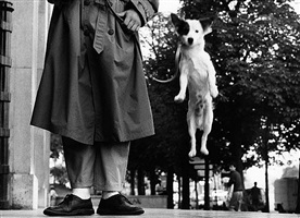 untitled by elliott erwitt