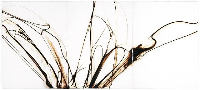 trace 2312 by etsuko ichikawa