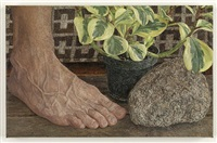 rock, foot, plant by ellen altfest