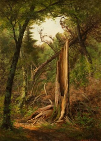 woodland interior by edward hill