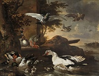 a shoveler (anas clypeata), a muscovy duck (cairina moschata), a mallard, pochards and other waterfowl on the banks of a river, with a pigeon and a bird of prey in the air by melchior de hondecoeter