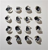 16 ways to view a black bird by anne hirondelle
