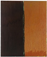 sixty by fifty number three by pat steir