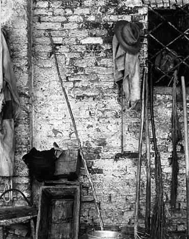 in a barn, luzzara, italy by paul strand