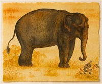 elephant by melissa miller