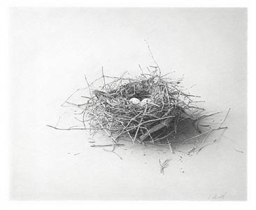 nest #5 by skip steinworth
