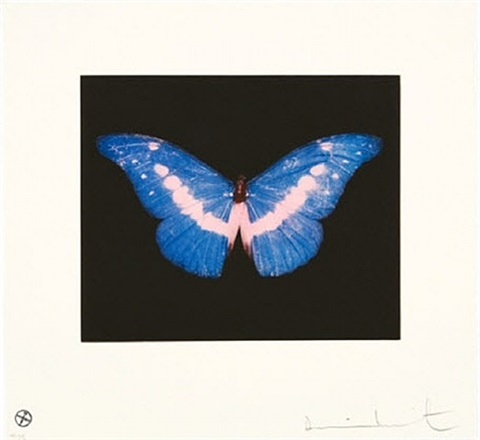 to belong by damien hirst
