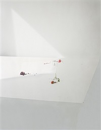 untitled #21 (ill form and void full) by laura letinsky