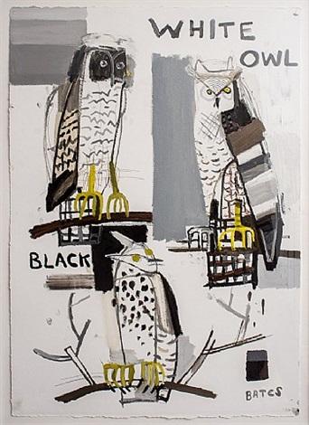 white black owl by david bates