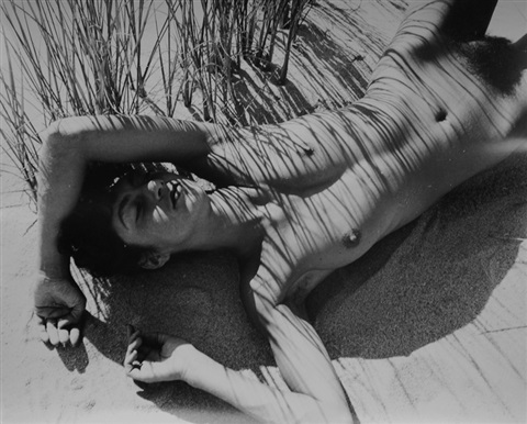 nude in reeds provincetown by herbert matter