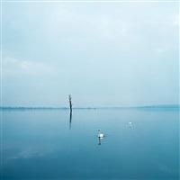untitled (swans) by evžen sobek