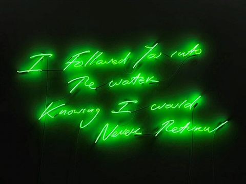 i followed you into the water knowing i would never return by tracey emin