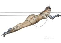 bondage and wire by hajime sorayama