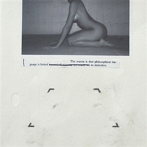 untitled (the reason) by julião sarmento