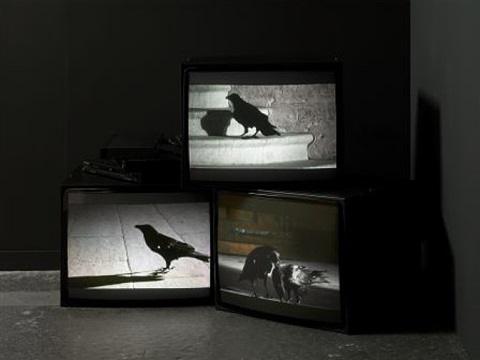 looking down with his black, black 'ee by douglas gordon