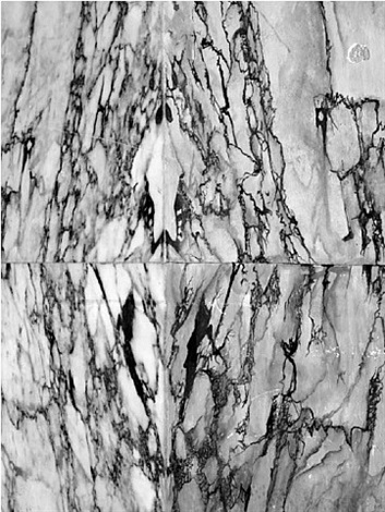 marmo by heidi specker