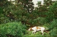 hunting the woodcock by john martin tracy