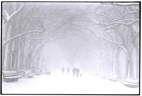 central park in winter, new york city by bruce davidson