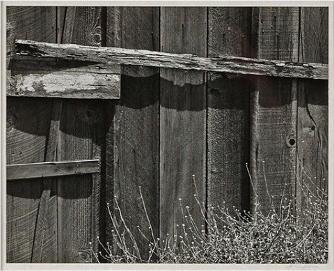 fence by ansel adams