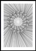 flower 1 by kai & sunny