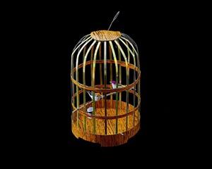 in case it rains in heaven – birdcage by kurt tong