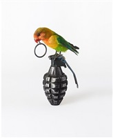 lovebird on grenade by nancy fouts