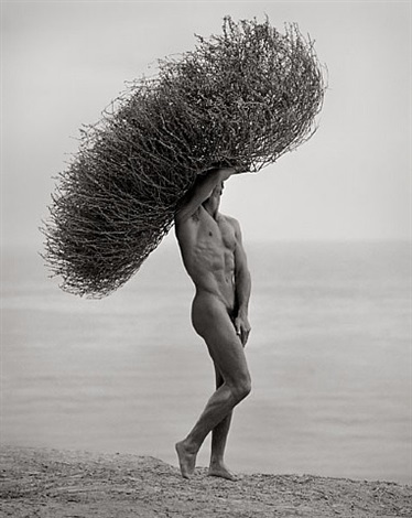 male nude with tumbleweed, paradise cove by herb ritts