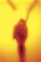 "immersions, ""winged victory"" by andres serrano"