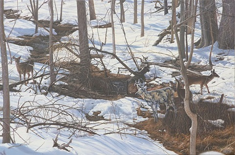 camo deer family in winter by ron english