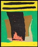 irish book by robert motherwell