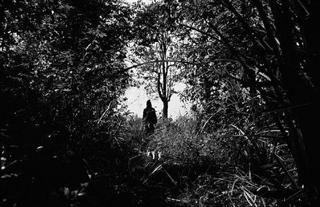 teen at forest nabua 2008 by apichatpong weerasethakul
