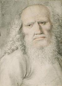 tête de vieillard by nicolas lagneau