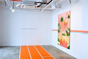 installation view - thukral & tagra: windows of opportunity 1 by thukral & tagra