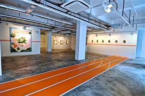 installation view - thukral & tagra: windows of opportunity 3 by thukral & tagra