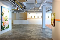 installation view - thukral & tagra: windows of opportunity 9 by thukral & tagra